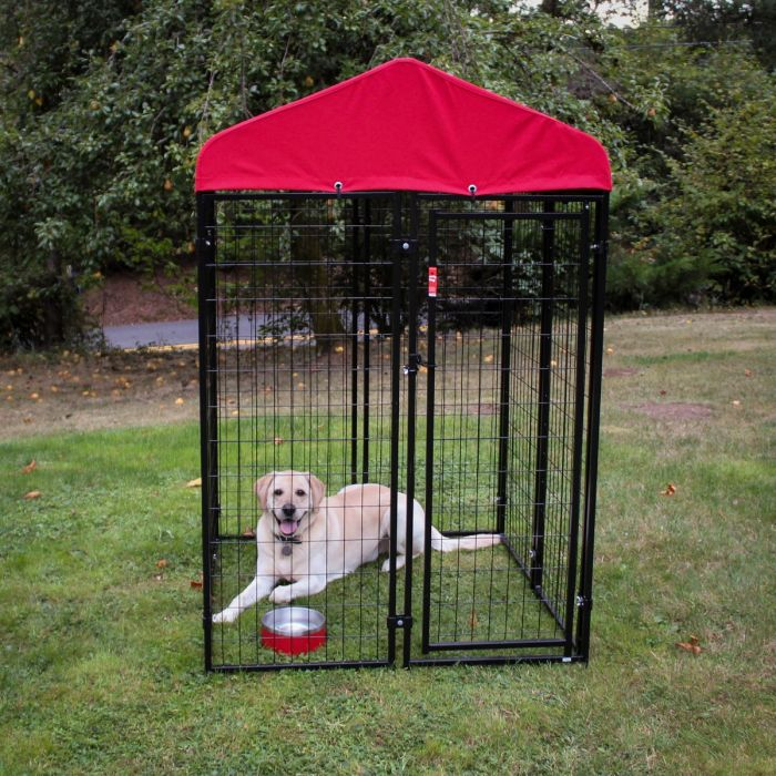 Lucky Dog 4'W x 4'L Uptown Kennel w/ Sunbrella Canopy Cover, Red