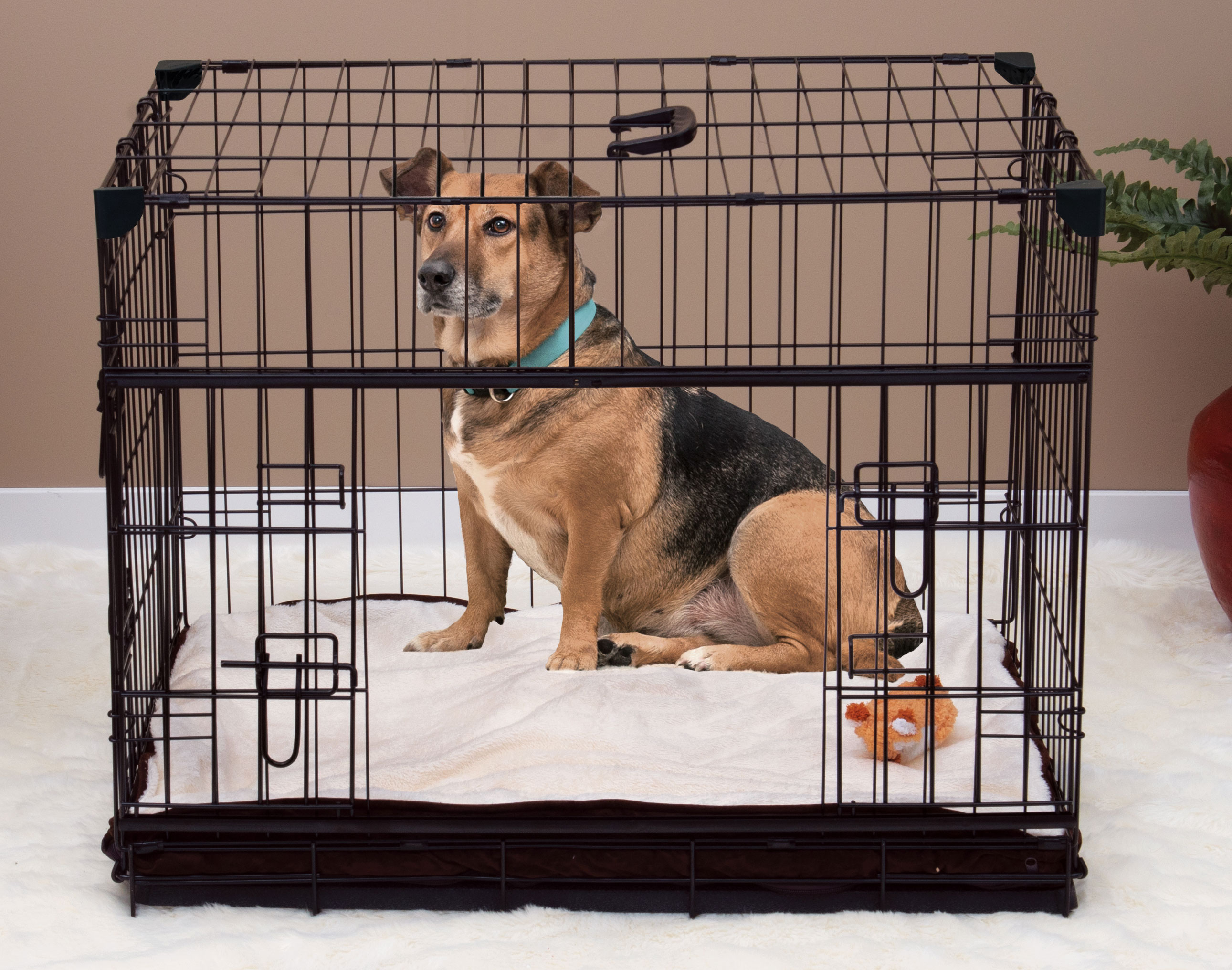 Lucky Dog® Slyder™ Crate with Sliding Side Door
