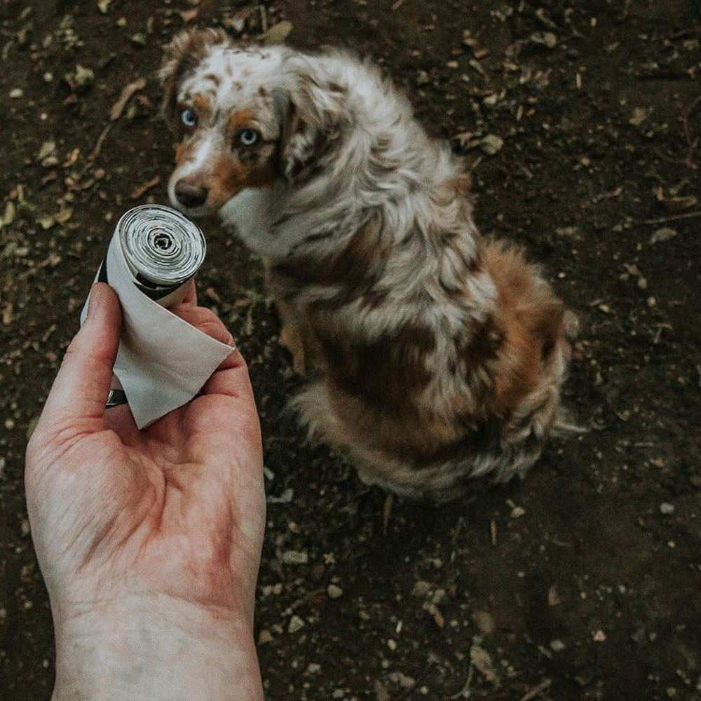 Lucky Dog Made From Plants Poop Bags, Featured Susieq_the_Aussie